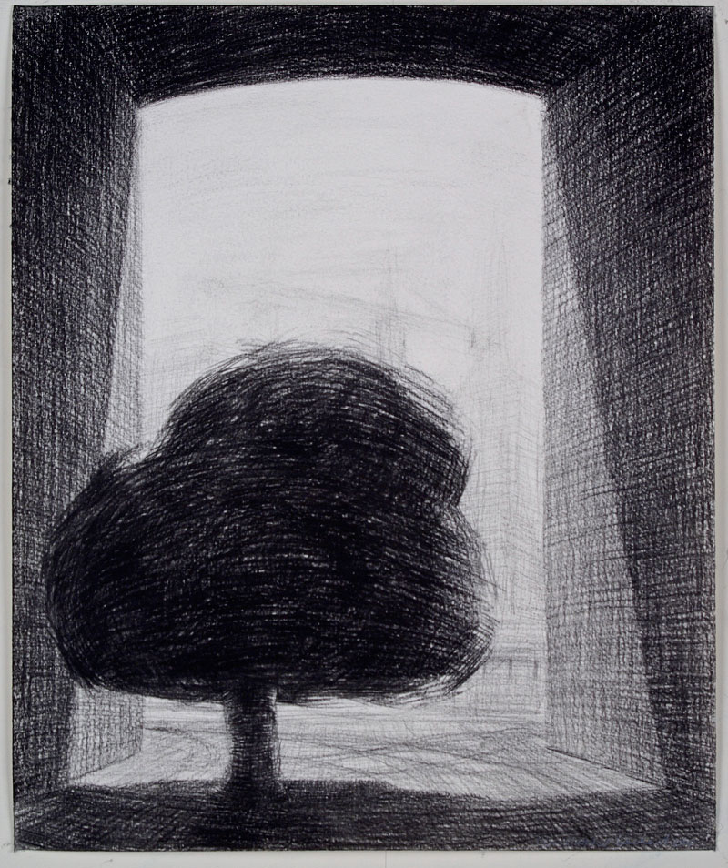 Captured, 2010 charcoal on paper 345 x 290cm