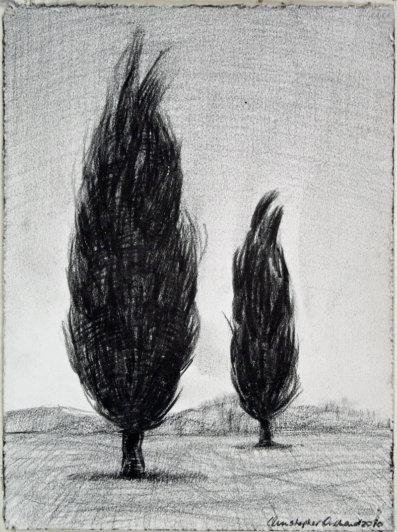 2011 Pair Charcoal on paper, 190x150cm